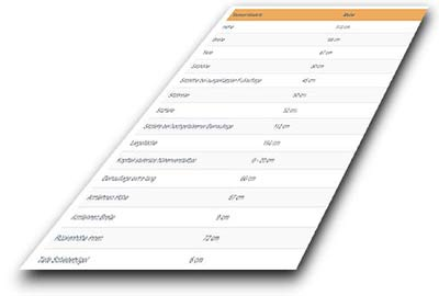 Aufstehsessel VIANDOplus Mass-Tabelle
