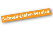 Schnell-Liefer-Service für Pflegesessel-Aufstehsessel